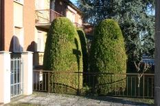 Manutenzione giardini-1