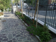 Giardini-9